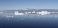 Icebergs and their reflections in the calm sea (Paul Cottis) Tags: weddellsea antarctica ocean blue sky calm ice iceberg reflection paulcottis 1 february 2019 feb tranquil