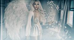 ᴬⁿ ᵃⁿᵍᵉˡˢ ᶜᵃˡˡ...... (scarlettrose.karsin) Tags: sl secondlife mossu foxcity blueberry doux angel avatar mystical