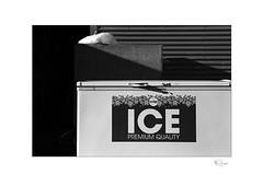 Ice (radspix) Tags: yashica 230af kyocera 2885mm f3545 ilford fp4 plus pmk pyro