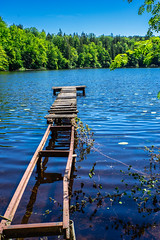 Walk on Water (*Capture the Moment*) Tags: 2019 bavaria bayern deutschland fotowalk germany hackensee lakehackensee mogtrioplan3528neo meyeroptikgörlitztrioplan3528neo sonya7m2 sonya7mii sonya7mark2 sonya7ii sonyilce7m2