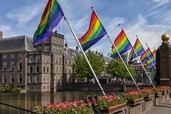 The Hague Pride (Pieter Musterd) Tags: regenboogvlag gaypride gay regeringsgebouwen mauritstoren hofbrug pietermusterd musterd canon pmusterdziggonl nederland holland nl canon5dmarkii canon5d denhaag 'sgravenhage thehague lahaye thehaguepride