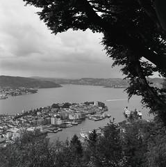 Bergen (Steinskog) Tags: bw 6x6 analog kodak d76 tmax100 fløyen hasselblad501cm planar80mm pushed2stop mediumformat