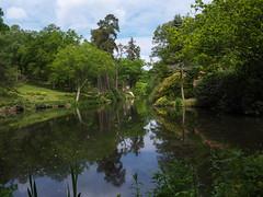 Leonardslee         190524 040 (vintage 1953 & wackymoomin) Tags: leonardslee gardens englishgardens sussex uk england olympus em10mkii silkypix mft m43