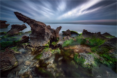 Theory of Chaos (Maciek Gornisiewicz) Tags: north beach perth western australia landscape seascape longexposure rocks clouds evening dusk twilight moss indian ocean outdoors moody ethereal canon nisi shore coast sigma 1424mm 5div maciek gornisiewicz darkelf photography 2019 theoryofchaos