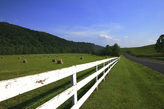 Fenced Friday: Perspective (Hayseed52) Tags: fencedfriday whitefence haybales road country virginia blueskies