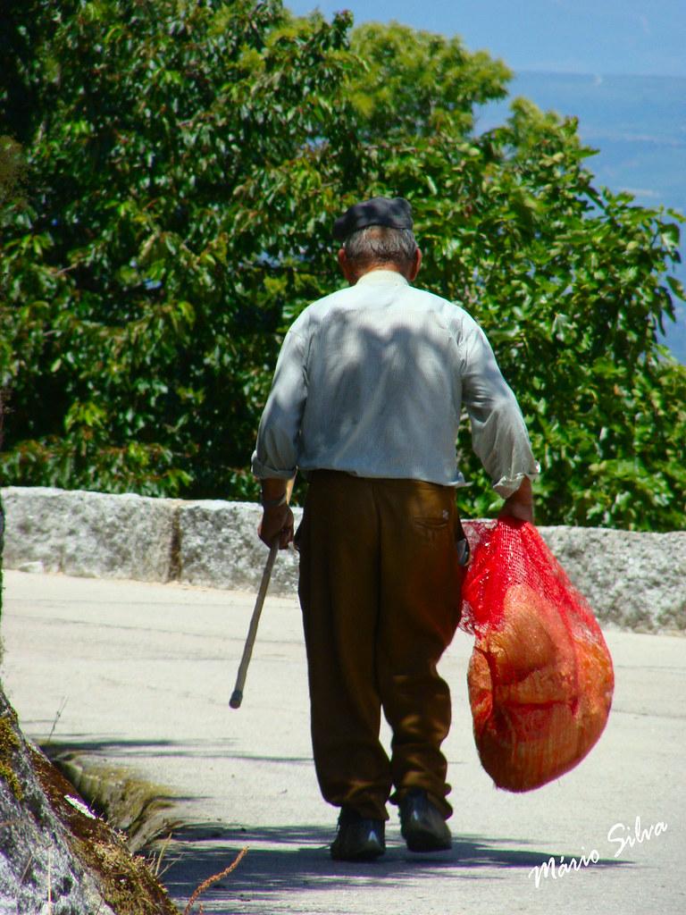 Águas Frias (Chaves) - ... levando ... no saco ...