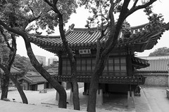 Changdeokgung Palace (jasoncremephotography) Tags: seoul leica sl leicasl blackandwhite monochrome