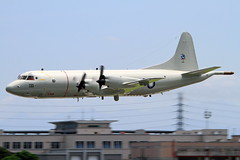 3301 Taiwan - Air Force Lockheed P-3C Orion (阿樺樺) Tags: 3301 taiwanairforce lockheed p3c orion