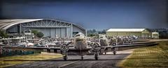 All my Daks in a row.... (waynedavey67) Tags: canon canoneos5dmkiiil 5dmkiii 100400mmmkii duxford2019 duxford dday75thanniversary airdisplay aircraft airplane dc3 c47 wwii war warplane conflict