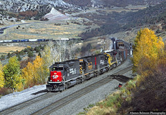 Through the Quaking Aspen (jamesbelmont) Tags: southernpacific riogrande drgw santafe cottonbelt emd sd40t2 c307 b398 gilluly utah solidersummit railroad railway train locomotive rvasm