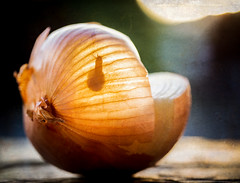 onion skin (auntneecey) Tags: onionskin onion snail texture tabletop series 365the2019edition 3652019 day158365 07jun19 auntneecey snailsandfood
