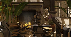 Forgotten Library... (kellytopaz) Tags: indoor garden tub bathtub plants library bust books rustic elegant