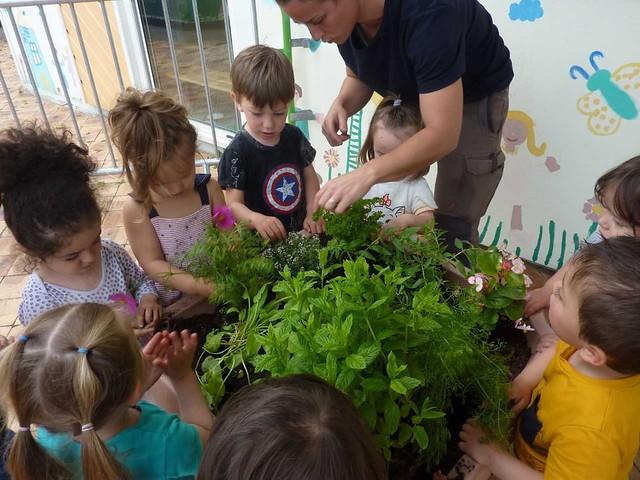Photo 1 - Atelier jardinage à la crèche familiale