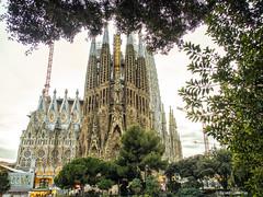 2776  Sagrada Familia, Barcelona (Ricard Gabarrús) Tags:
