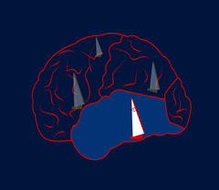 illustration of a brain as an ocean (illustrationvintage) Tags: concept conceptual symbol creative mind abstract design human isolated graphic brainstorm medical medicine inspiration disease health icon knowledge planning computer learn connection digital thinking think network solution education art innovation business intelligence creativity science head technology illustration idea brain ship redcross saving save sea ocean