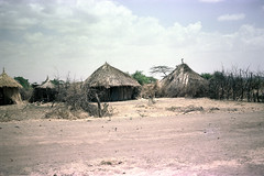 78-353 (ndpa / s. lundeen, archivist) Tags: nick dewolf color photograph photographbynickdewolf 1976 1970s film 35mm 78 reel78 africa northernafrica northeastafrica african ethiopia ethiopian village unidentified unidentifiedvillage sky clouds fence branches sticks wood trees building buildings hut huts thatchroof thatchedroof