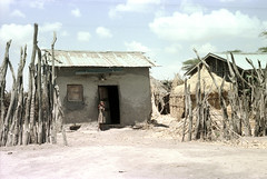 78-351 (ndpa / s. lundeen, archivist) Tags: nick dewolf color photograph photographbynickdewolf 1976 1970s film 35mm 78 reel78 africa northernafrica northeastafrica african ethiopia ethiopian people localpeople village unidentified unidentifiedvillage sky clouds fence branches sticks wood building sheetmetalroof door doorway buildings hut huts thatchroof thatchedroof child girl younggirl localgirl dress powerlines