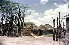 78-352 (ndpa / s. lundeen, archivist) Tags: africa wood trees sky color film clouds 35mm fence sticks village african branches nick photograph ethiopia 1970s 78 1976 unidentified dewolf ethiopian northernafrica photographbynickdewolf northeastafrica unidentifiedvillage reel78 building buildings huts powerlines hut thatchedroof thatchroof