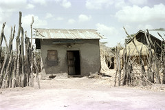 78-349 (ndpa / s. lundeen, archivist) Tags: nick dewolf color photograph photographbynickdewolf 1976 1970s film 35mm 78 reel78 africa northernafrica northeastafrica african ethiopia ethiopian village unidentified unidentifiedvillage sky clouds fence branches sticks wood building sheetmetalroof door doorway buildings hut huts thatchroof thatchedroof powerlines