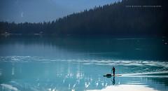Early Morning Paddle (jraposo3072) Tags: lakelouise alberta banff paddleboard lake mountains lanscape