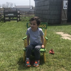 Ezra sits on the Potty Toss seat (brownpau) Tags: canada novascotia halifax coleharbour coleharbourheritagefarmmuseum iphone7 ezraordo ezra