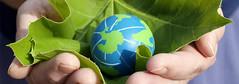 International Business Helping other business (bogoljubkaric.02) Tags: international business helping other bogoljub karicuae