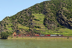 """TXL 189 997-0""""Pferdelok"""" mit einem KLV-Zug auf der rechten Rheinstrecke kurz vor Kaub, 05.06.2019 (-cg86-) Tags: txlogistik txl br189 rhein rhineriver rheintal güterzug"""