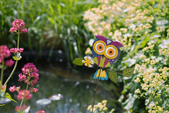 _DSC1647 (Ghostwriter D.) Tags: burghausen castle bavaria town nikond600 flowers garden