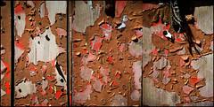 009345 (onesecbeforethedub) Tags: vilem flusser technical images onesecbeforetheend onesecbeforethedub onesecaftertheend photoshop multiple exposure collage malta edinburgh contemporaryart streamofconsciousness details rust decay industrial anthropomorphism anthropocene triptych
