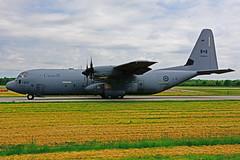 CAF 130614 (RCAF) (Steelhead 2010) Tags: rcaf royalcanadianairforce lockheed c130j cc130j hercules yhm 130614
