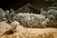 _DSC1201 Belanger Creek Barn (Charles Bonham) Tags: infrared sonya7r sonyzeissfe1635mmf4 belangercreek barn charlesbonhamphotography
