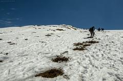 Hiking up the mountain top... (CoSurvivor) Tags: chandrashila chopta tungnath garhwal uttarakhand himalaya india travel lonelyplanet natgeotraveler incredibleindia nature mountains valley hike trek roadtrip explore photography cosurvivor