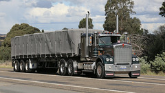 Historic Kennys (6 of 6) (Jungle Jack Movements (ferroequinologist) all righ) Tags: 1984 kenworth 1985 w900 w925 kw kenny single ken highway hauling haulin hume sydney 2019 yass classic historic vintage veteran hcvca vehicle run hp horsepower big rig haul haulage freight cabover trucker drive transport delivery bulk lorry hgv wagon nose semi trailer deliver cargo interstate articulated load freighter ship move roll motor engine power teamster tractor prime mover diesel injected driver cab wheel k