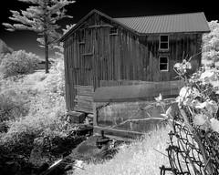 _DSC1218 Belanger Creek Falls (Charles Bonham) Tags: infrared sonya7r sonyzeissfe1635mmf4 belangercreek barn charlesbonhamphotography