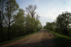 *** (pszcz9) Tags: droga road wiosna spring pejzaż landscape beautifulearth sony a77