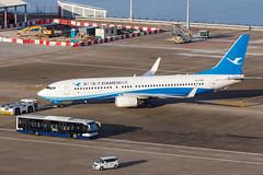 XIAMEN AIR B737-800(WL) B-1709 001 (A.S. Kevin N.V.M.M. Chung) Tags: aviation aircraft aeroplane airport airlines plane boeing b737 b737800wl xiamenairlines macauinternationalairport mfm spotting apron