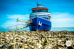 Blue is the Color of the Day (RonHui) Tags: ameland rijkswaterstaat instawalkrws waddenzee