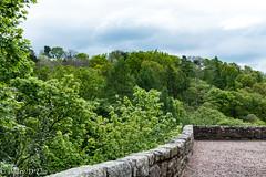 RosslynCastle Glen LO-0066 (Mary D'Elia) Tags: roslin roslinglen rosslyncastle scotland uk ancientwoodland bridge forrest history travel trees