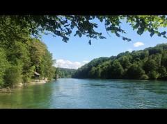 ViaRhenana 26 (Beat09) Tags: schweiz switzerland suisse rhein rheinufer rhine wasser water fluss river dachsen