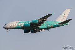 HI FLY 9H-MIP A380-841 EGSS 03/06/19 (_alphabravo) Tags: avgeek aviation aviationphotography airplane airport avporn airliner airline eos england planespotter planespotting photography plane planeporn sky window jet cloud aircraft wheel cockpit tree canon 7dmkii airbus airbuslovers airbusa380 hifly stansted londonstansted egss stn stanstedspotters