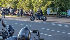 Krazy Horse Bike Night (Caught On Digital) Tags: bikes burystedmunds choppers custom harleydavidson krazyhorse motorcycles motorbikes suffolk