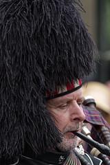 _IMG2228_DxO_DxO (douglasjarvis995) Tags: piper music musician band