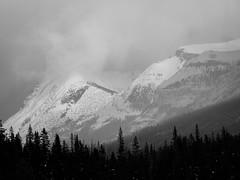 20190220 161310 Canada 0478.jpg (mnickjw) Tags: paintpots kootenay canada places britishcolumbia americas rockies