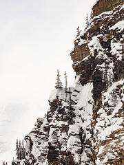 20190223 113952 Canada 0602.jpg (mnickjw) Tags: alberta lakelouise canada places americas rockies