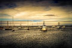 Bay Boats (crowt59) Tags: harbor boats lr bay san francisco california evening light room photomorphis texture crowt59 nikon d800 nikonflickraward