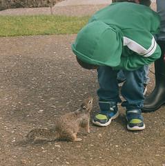New found friends (tarkushoo) Tags: film 120 6x6 yashica mat squirrel park boy portra medium format