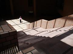 talk in the light (peaceblaster9) Tags: lights shadows people shinjuku tokyo japan lumixgx7mk3 15mm 光 影 ビル stairs 階段 新宿 東京