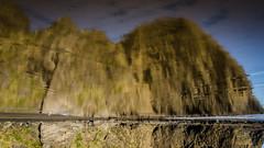 Downside Up (Stefan Marks) Tags: wigmorebay bay beach nature outdoor reflection rock aucklandwaitakere northisland newzealand