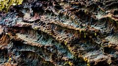Iron sandstone (Stefan Marks) Tags: nature outdoor pattern rock rust aucklandwaitakere northisland newzealand