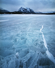 Winter (Zeb Andrews) Tags: pentax67 canada canadianrockies kodakektar100 film 6x7 alberta landscape frozen winter
